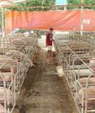 Giáo trình Cơ sở chăn nuôi - Chương 2