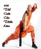 108 Thế cước võ Thiếu Lâm