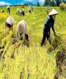 Kinh tế nông nghiệp