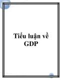 Tiểu luận về GDP