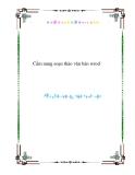 Cẩm nang soạn thảo văn bản wrod