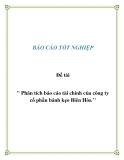 """Đề tài """" Phân tích báo cáo tài chính của công ty cổ phần bánh kẹo Biên Hòa """""""