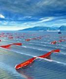Thuyết trình Năng lượng sóng biển