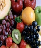 Đề cương môn Cây ăn quả