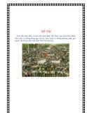Tiểu luận: Giai cấp công nhân và giai cấp công nhân Việt Nam: quá trình hình thành, phát triển và những đóng góp của họ, thực trạng và những phương pháp giải quyết vấn đề giai cấp công nhân Việt Nam hiện nay