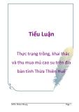 Tiểu luận: Thực trạng trồng, khai thác và thu mua mủ cao su trên địa bàn tỉnh Thừa Thiên Huế