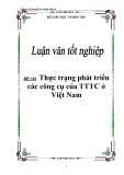 Đề tài về thực trạng phát triển các công cụ của TTTC ở Việt Nam