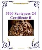 3500 câu hỏi luyện thi chứng chỉ B Tiếng Anh  (Có đáp án)