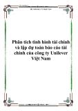 Phân tích tình hình tài chính và lập dự toán báo cáo tài chính của công ty Unilever Việt Nam