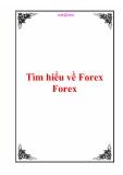 Tìm hiểu về Forex Forex
