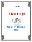 Tiểu luận Quản trị thương hiệu: Quản trị thương hiệu của công ty may thời trang Việt Tiến