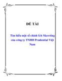 Tiểu luận: Tìm hiểu một số chính sách Mareting của công ty TNHH Prudential Việt Nam