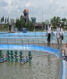 Quản lý chất lượng nước ao nuôi thủy sản - Lược dịch: Trương Quốc Phú, Vũ Ngọc Út