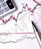 Kế toán tổng hợp nguyên vật liệu trong DN sản xuất