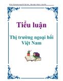 Tiểu luận: Thị trường ngoại hối Việt Nam