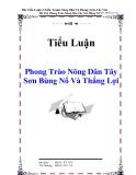 Tiểu Luận : Phong Trào Nông Dân Tây Sơn Bùng Nổ Và Thắng Lợi