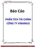 Tiểu luận: Phân tích công ty cổ phần sữa Vinamilk