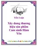Tiểu luận: Xây dưng thương hiệu sản phẩm Cam sành Hàm Yên