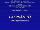 """Thuyết trình """" Lai phân tử """""""