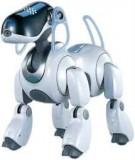 Ngân hàng câu hỏi môn học Robot công nghiệp