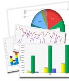 Mẫu Báo cáo kết quả hoạt động kinh doanh