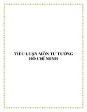 """Tiểu luận Tư tưởng Hồ Chí Minh """" Sự vận dụng của Đảng và nhà nước ta về chính sách đối với Việt Kiều yêu nước hiện nay """""""