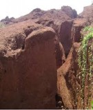 Một số biện pháp chống xói mòn trên đất dốc