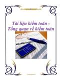 Tài liệu kiểm toán - Tổng quan về kiểm toán