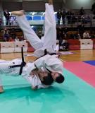 Thể thao võ thuật – Môn judo