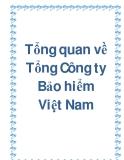 Tổng quan về Tổng Công ty Bảo hiểm Việt Nam