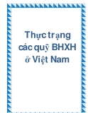 Thực trạng các quỹ BHXH ở Việt Nam