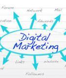 Tổng quan về Digital Marketing ở Việt Nam 2009