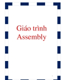 Ebook: Assembly