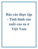 Báo cáo thực tập - Tình hình sản xuất cao su ở Việt Nam