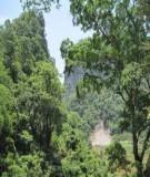 Bài giảng về bảo tồn đa dạng sinh học : bể bùn hoạt tính
