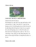 Chăm sóc thỏ mẹ