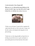 Cai sữa cho lợn lúc 21 hay 28 ngày tuổi