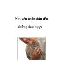Nguyên nhân dẫn đến chứng đau ngực