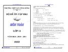 Tổng hợp đề thi học kì 1 môn Toán lớp 11 năm 2010-2011 - Trường THPT Gò Công Đông