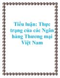 Tiểu luận: Thực trạng của các Ngân hàng Thương mại Việt Nam