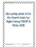 Giải pháp phát triển thẻ thanh toán tại Ngân hàng TMCP Á Châu ACB
