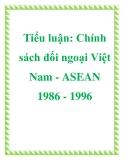 Tiểu luận: Chính sách đối ngoại Việt Nam - ASEAN 1986 - 1996
