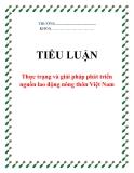 Tiểu luận:Thực trạng và giải pháp phát triển nguồn lao động nông thôn Việt Nam