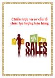 Chiến lược và cơ cấu tổ chức lực lượng bán hàng
