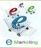Tiếp thị điện tử E-marketing