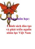 Đề án môn học: Chính sách đào tạo và phát triển nguồn nhân lực Việt Nam