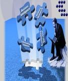 Sự cần thiết và mục tiêu của Sổ tay kiểm toán nội bộ