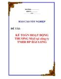 Báo cáo tốt nghiệp: Kế toán thương mại tại công ty TNHH DP Hải Long