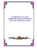 SỰ ĐỔI MÀU CÁC LOẠI COMPOSITE DƯỚI ẢNH HƯỞNG CỦA CÁC LOẠI GEL FLUOR