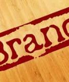 Tại sao Doanh nghiệp cần phải xây dựng hệ thống nhận diện thương hiệu?